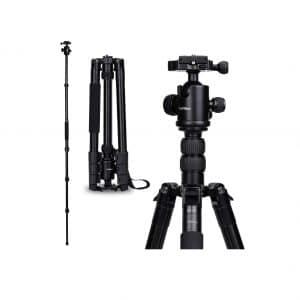 YoTilon 64-Inches Tripod Camera Stand