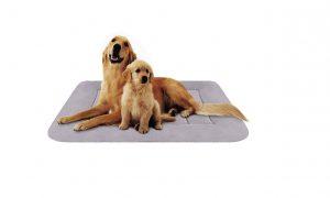 Hero Dog Anti Slip Cushion Large Dog Bed for Pets Sleeping