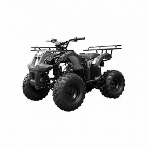 TaoTao ATV TForce 4-Wheeler Quad for Kids