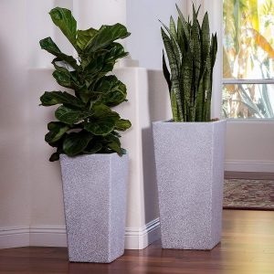 XBrand Canary Products Tall Pot Planter