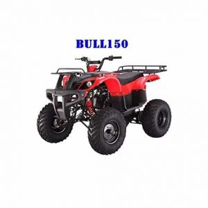 Coolster 150cc Adult Quad for Kids