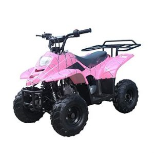 ICEbear 110cc ATV Four Wheelers Fully Automatic