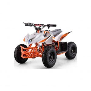 Titan Outdoor 24V Quad for Kid