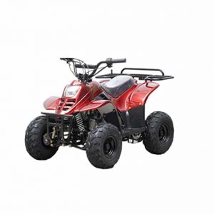 DONGFANG TAO TAO ATV Fully Automatic Quad for Kids