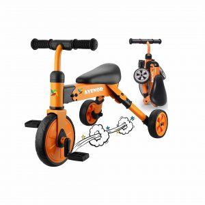 Avenor 2 in 1 Tricycle for Kids