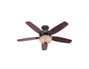 Hunter Fan Company Indoor Ceiling Fan with Light