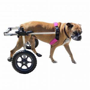 K9-Carts-Original-Dog-Wheelchair