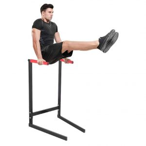 Homlpope Home Pull Push up Dip Station