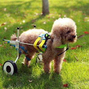 NewLife Mobility 2-Wheels Adjustable Dog Wheelchair