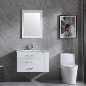 Walsport Bathroom Vanity Sink Combo