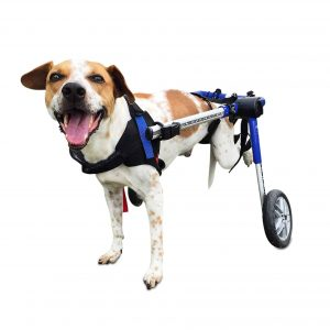 Walkin' Wheels 26-49 Pounds Dog Wheelchair
