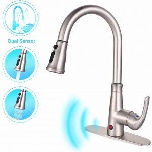 Dalmo DAKF5F Kitchen Faucet