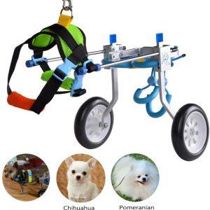 HiHydro-6-Types-Cart-Pet-Wheelchair