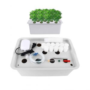 Homend Indoor Hydroponic Grow Kit with Bubble Stone