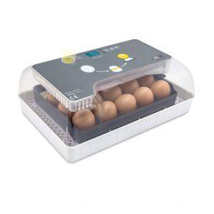 Jumbl Clear Fully Automatic Egg Incubator
