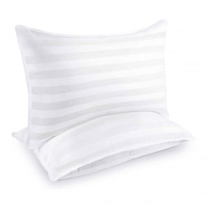 COZSINOOR 2-Pack Queen Size Hotel Collection Large Pillows