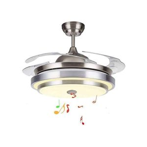 WUAZ Ceiling Fan with Light