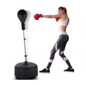 Aceshin Punching Bag for Outdoor Training