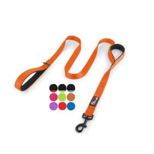 Primal Pet Gear 6Ft Heavy Duty Dog Leash